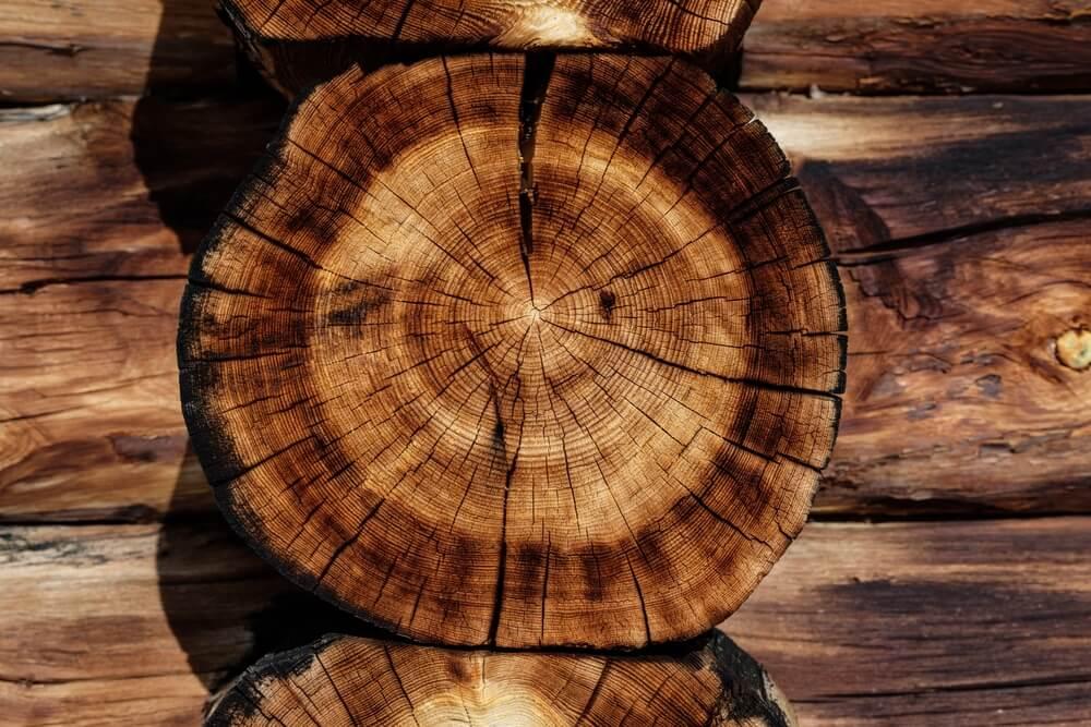 Le choix entre le bois mou et le bois dur