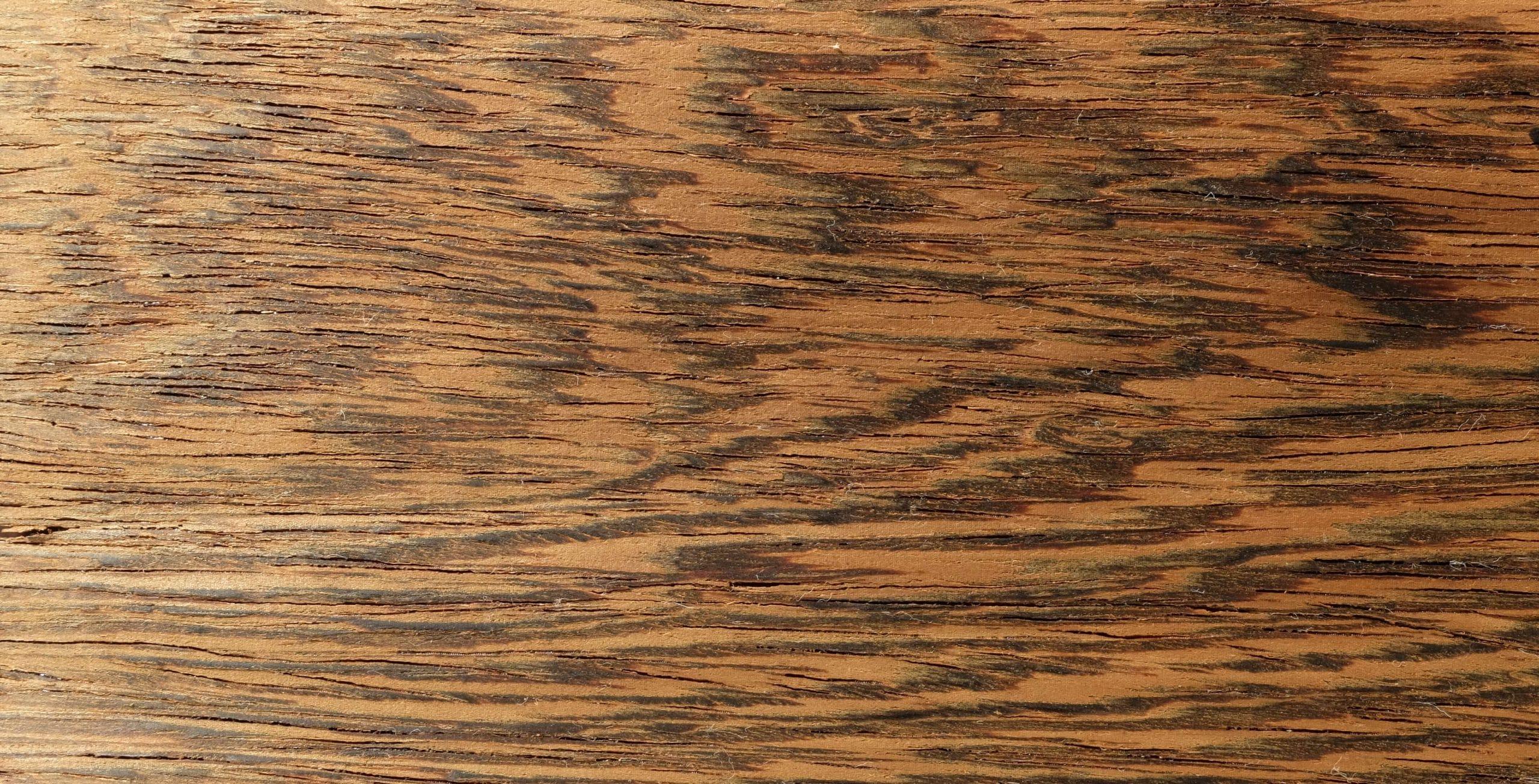 bois de wengé