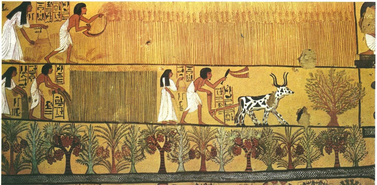 ancient-egypt-lin