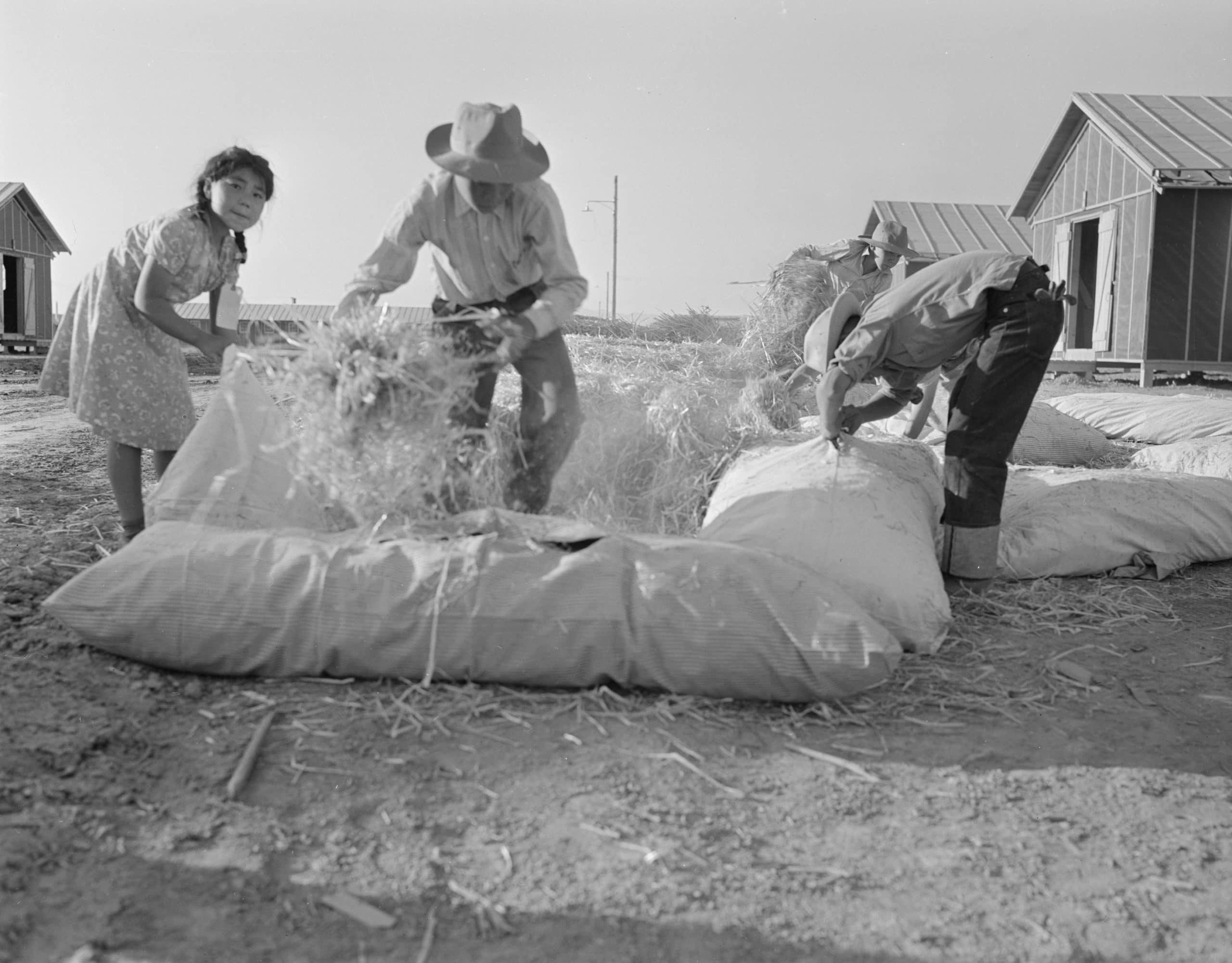 L'histoire du matelas en paille