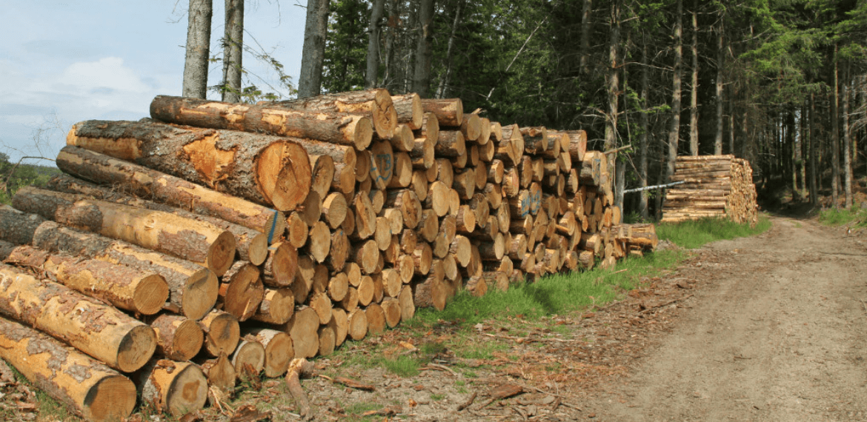 tête de lit en bois de pins